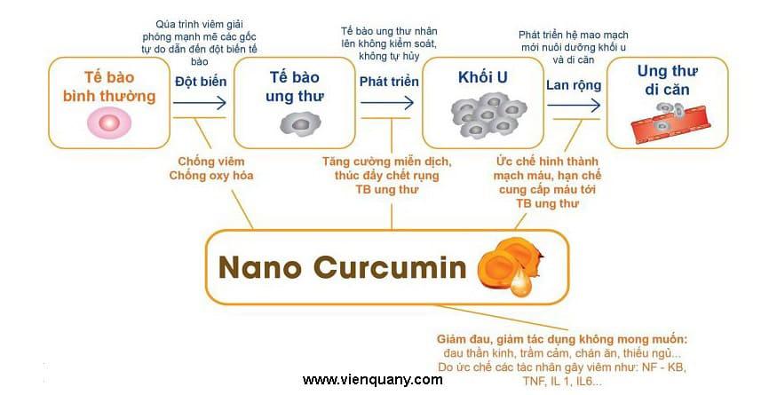 Nanocurcumin - tam thất - xạ đen - Học Viện Quân Y