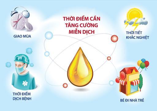 Đông trùng hạ thảo và tác dụng tăng cường hệ miễn dịch hiệu quả